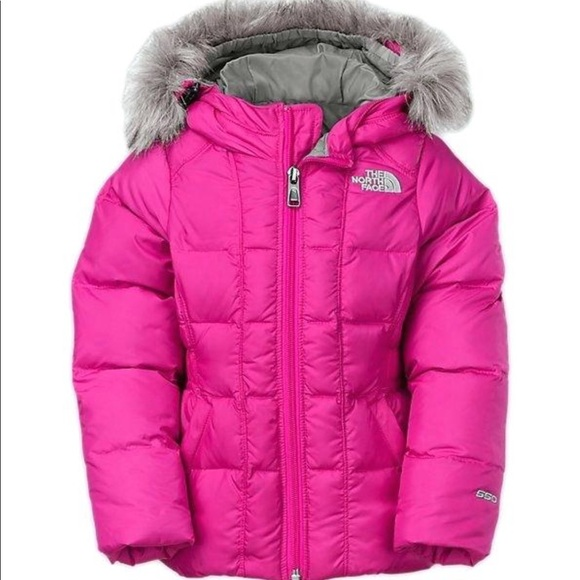 0cce794a8 NWT Toddler North Face Jacket NWT